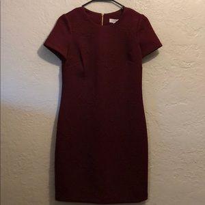 Calvin Klein rose dress